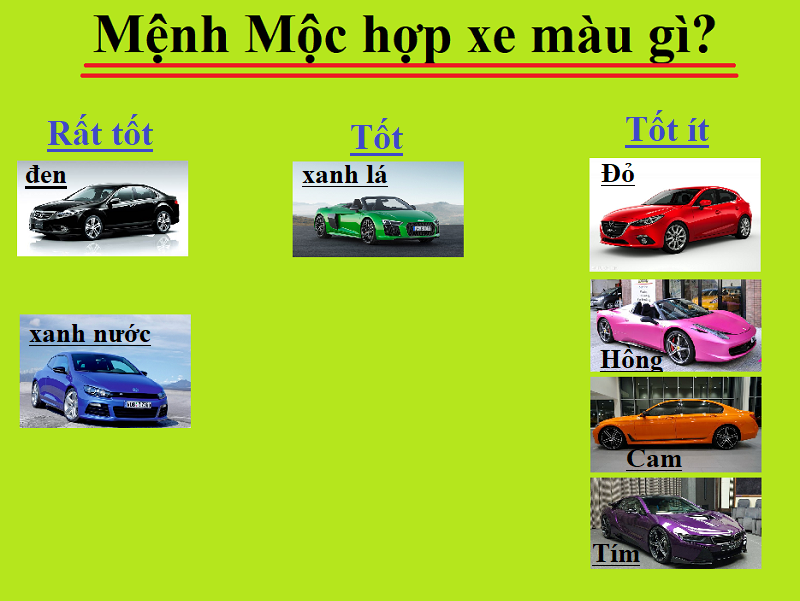 Mệnh Mộc hợp xe màu gì theo phong thủy? Người mệnh Mộc nên mua xe màu gì?