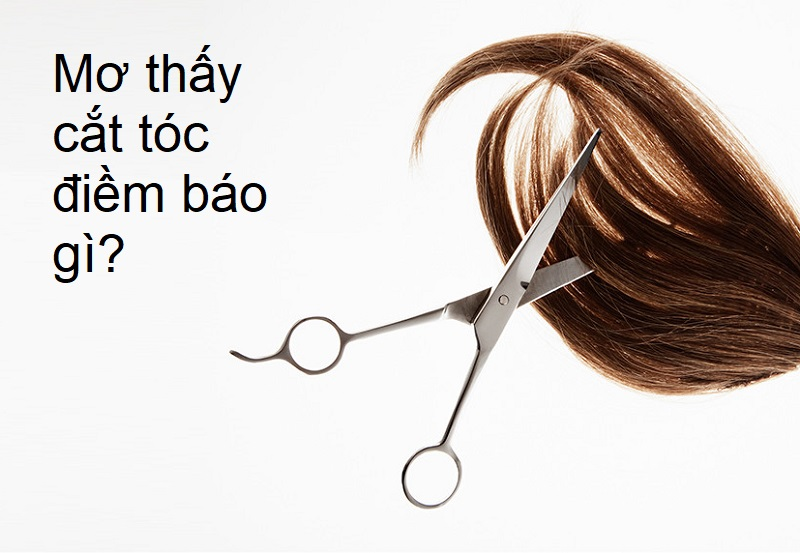 Nằm mơ thấy cắt tóc điềm báo gì? Giải mã giấc mơ thấy cắt tóc