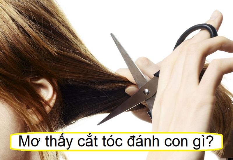 Nằm mơ thấy cắt tóc đánh con gì? Giải mã giấc mơ thấy mình cắt tóc