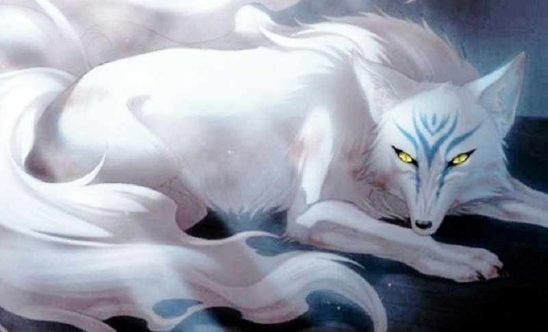 Nằm mơ thấy hồ ly là điềm báo gì? Mơ thấy Hồ ly trắng đánh con gì?