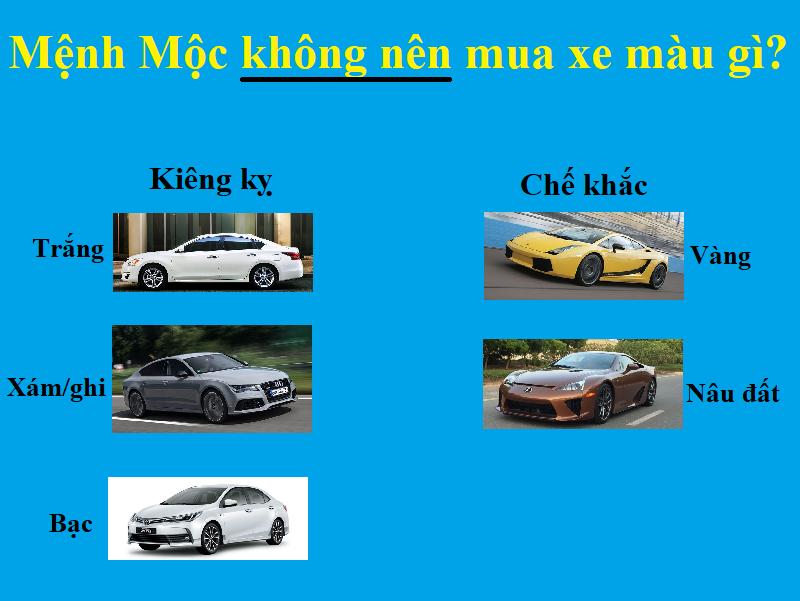 Người mệnh Mộc hợp xe màu gì, không nên mua xe màu gì?