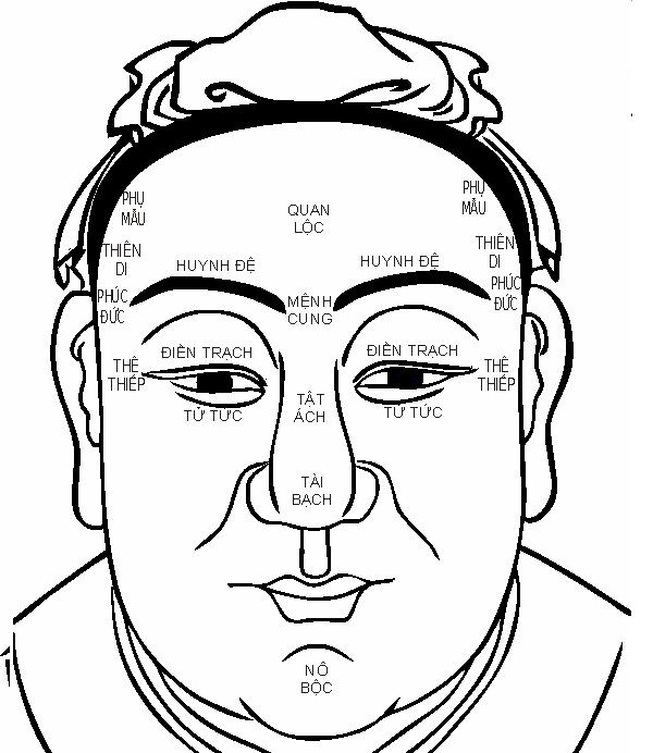 Hướng dẫn cách xem tướng trán đoán tính cách, vị trí các cung trên khuôn mặt