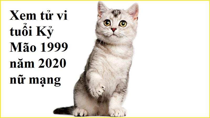 Xem tử vi tuổi Kỷ Mão 1999 năm 2020 nữ mạng