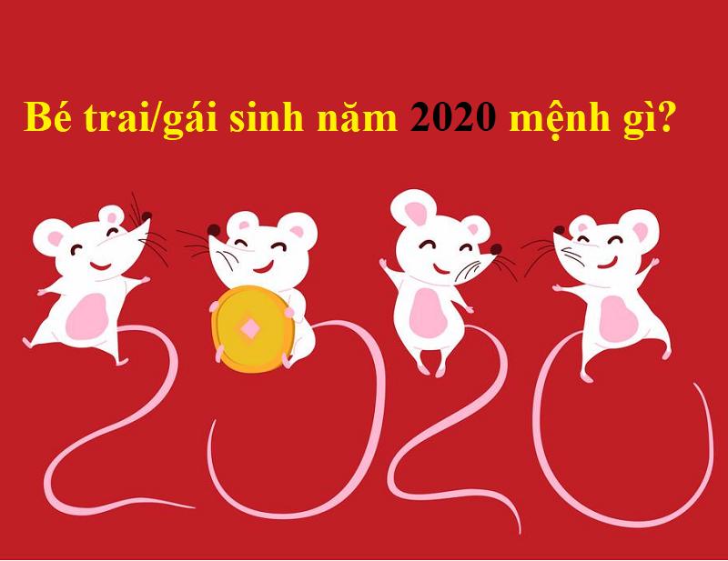 Bé trai, gái sinh năm 2020 mệnh gì?