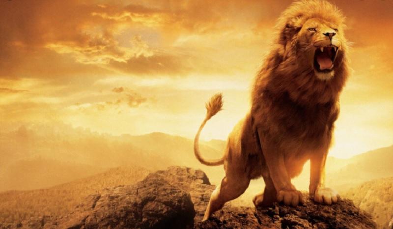 Cung sư tử nữ hợp với cung nào? Cung sư tử nữ thích yêu chàng trai như nào?