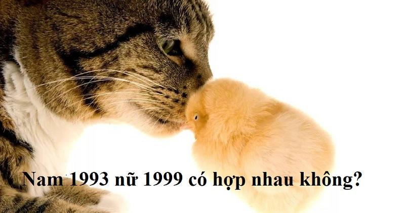 Nam 1993 nữ 1999 có hợp nhau không? Xem tuổi kết hôn nam 1993 nữ 1999