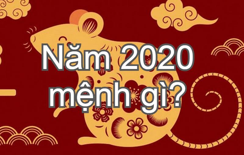 Năm 2020 mệnh gì, tuổi gì, sinh năm con gì?