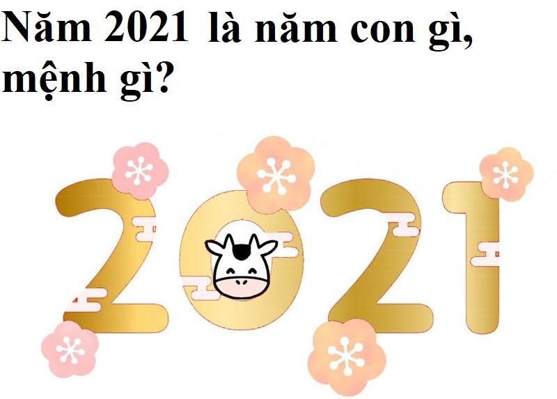 Năm 2021 là năm gì, mệnh gì, tuổi gì?