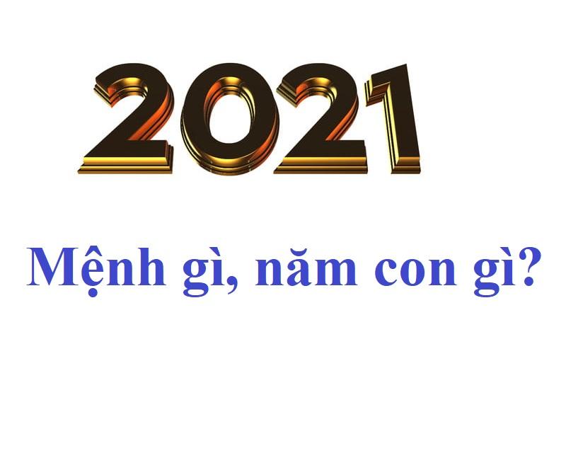 Năm 2021 mệnh gì, tuổi gì, năm con gì?