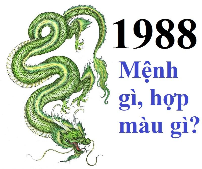 Sinh năm 1988 mệnh gì, tuổi gì? Nam nữ sinh năm 1988 hợp tuổi nào, hợp sinh con, kết hôn tuổi nào?