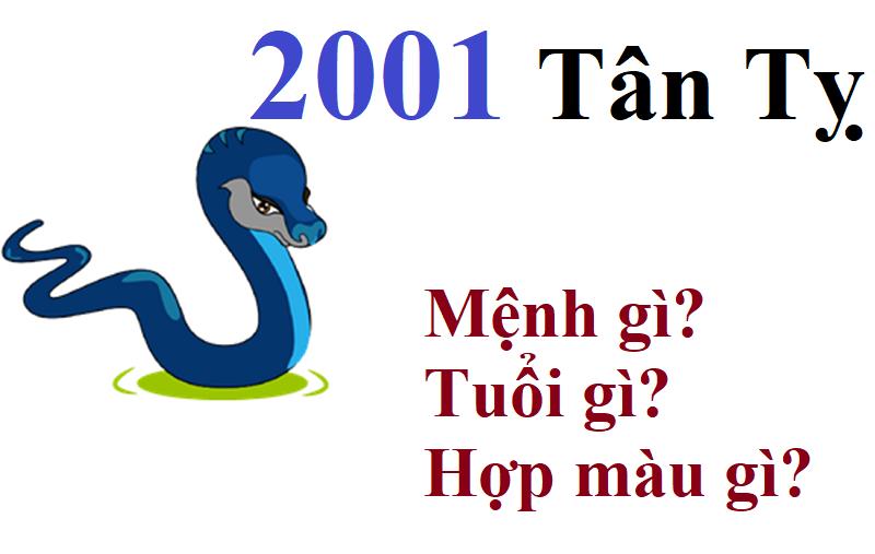 Sinh năm 2001 mệnh gì, hợp màu gì, hướng nào, mệnh nào?