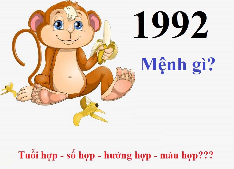 1992 mệnh gì, hợp màu gì, hướng nào, số mấy?
