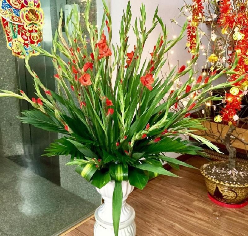 Ngày tết nên cắm hoa gì? Cắm hoa gì ngày tết đẹp?