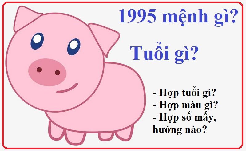Tuổi Ất Hợi 1995 mệnh gì, hợp màu gì, tuổi nào?