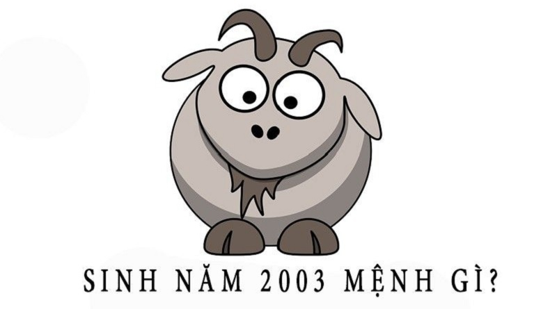 2003 tuổi gì? 2003 lấy chồng tuổi gì?