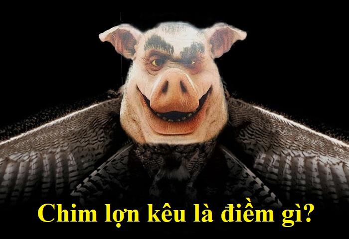 Chim lợn kêu là điềm gì?