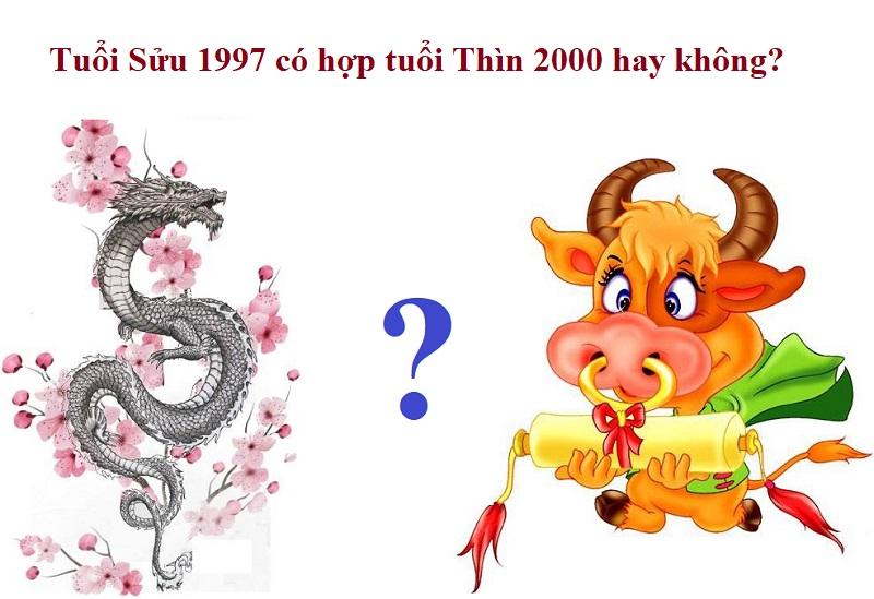 Tuổi Sửu 1997 có hợp với tuổi Thìn 2000 hay không?