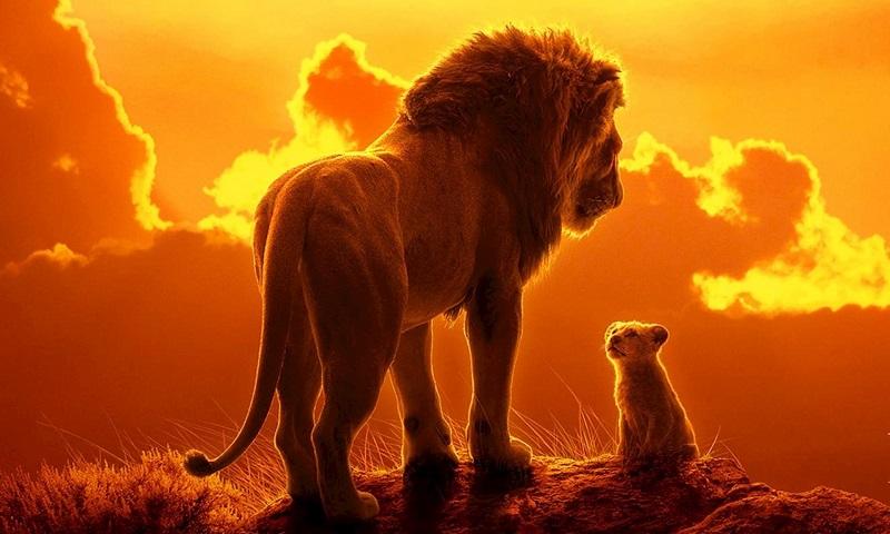 12 lời tiên tri về giấc mơ thấy sư tử sẽ giúp bạn đổi đời trong ngay lập tức