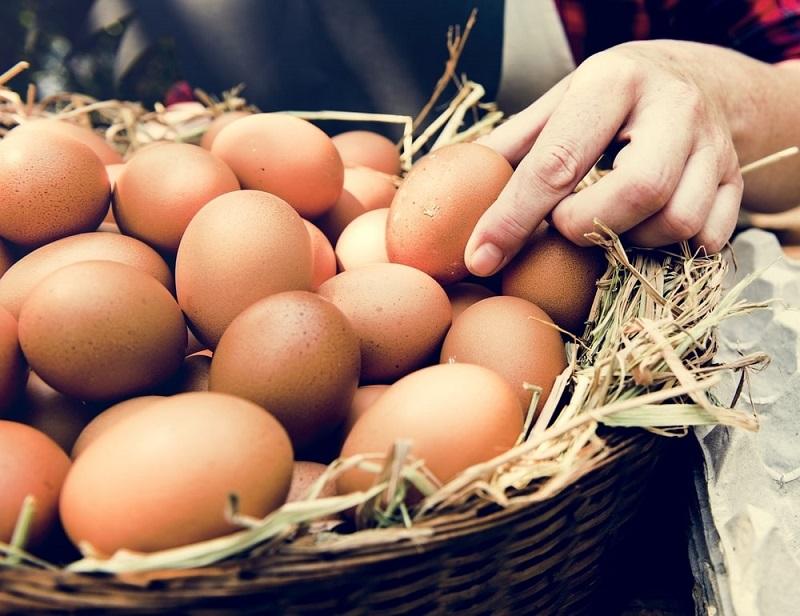 Mơ thấy trứng gà là điềm gì?