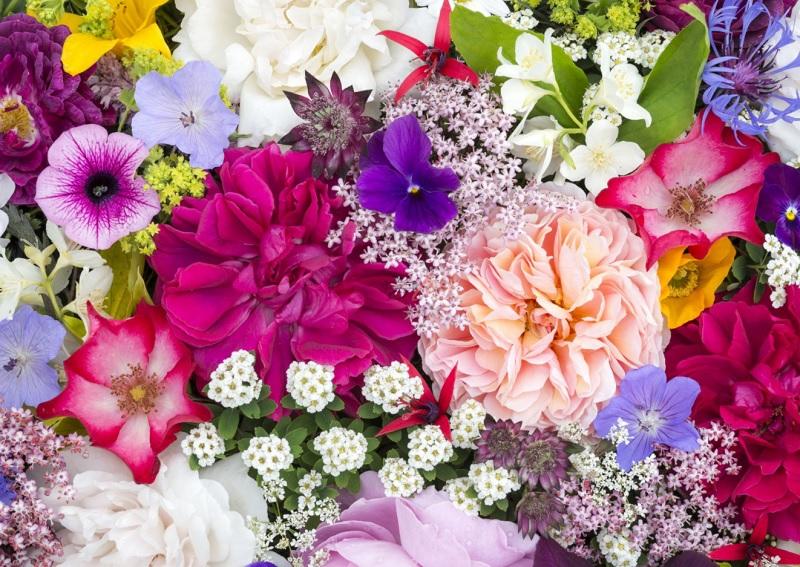 Mơ thấy hoa là điềm báo gì? Mơ thấy hoa tươi tốt hay xấu