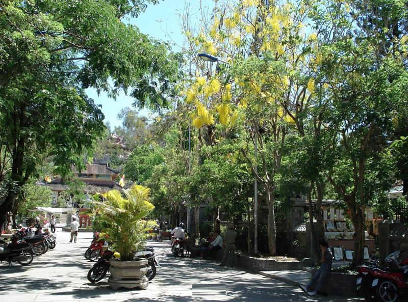 Review những ngôi chùa cổ ở Nha Trang. Chùa Oai Linh